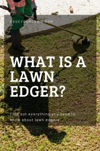what is a lawn edger pin