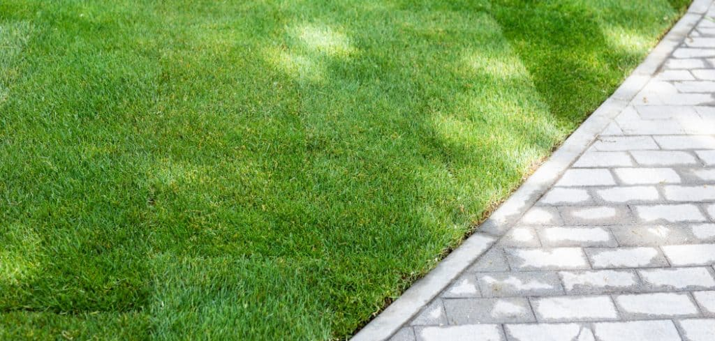 what is the point of lawn edging