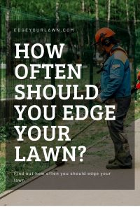 how often should you edge your lawn pin